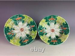 Late Qing. A Pair of Chinese porcelain plate, famille rose glazed, marked