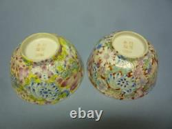 Late Qing Dynasty Pair fine Chinese flower bowls