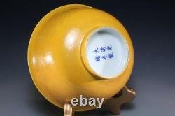 Chinese Late Qing Dynasty Porcelaine Bowl
